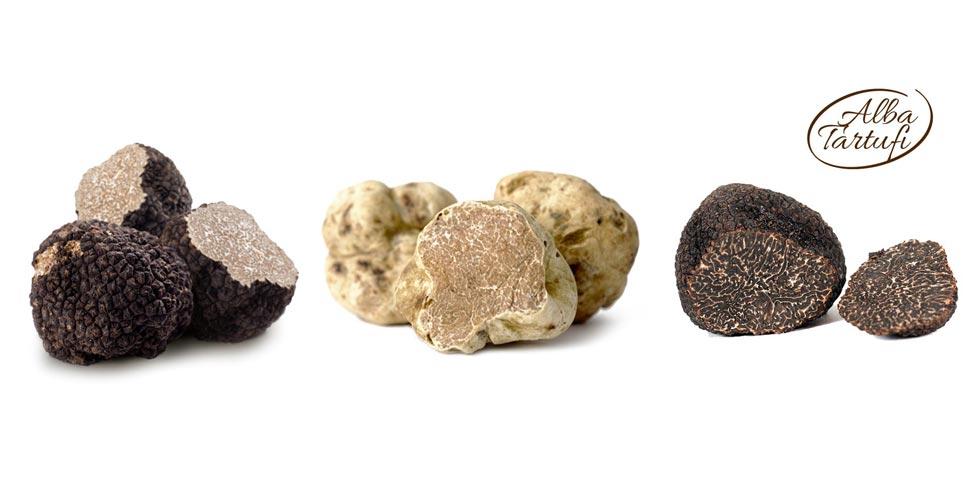 Fresh Truffles;