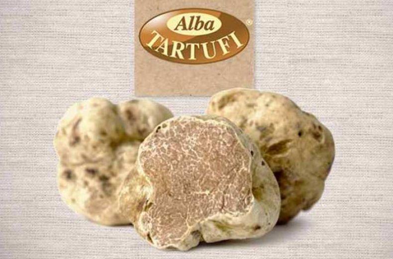 Tartufo Bianco Dalba Alba White Truffle Truffe Blanche D Alba 1