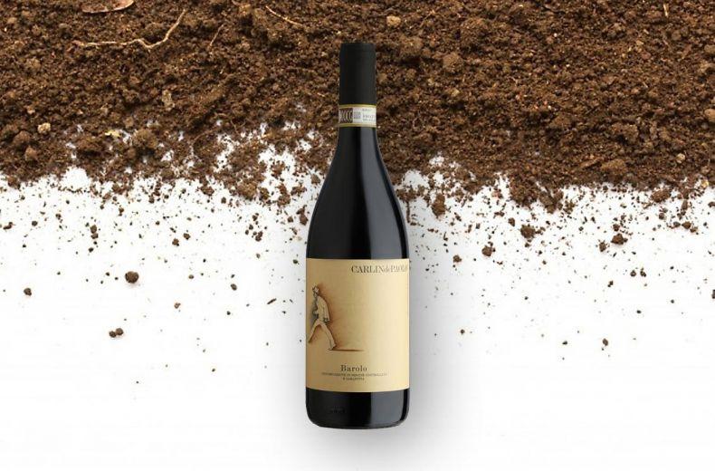Vino Gourmet 2